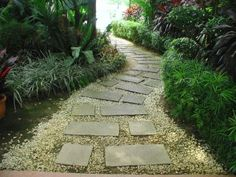 Square & Rectangle Path