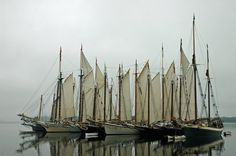 Maine Schooners set sail