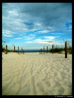 St. George Island, FL. One of the best places to vacation!