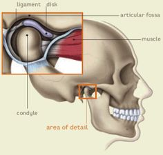 7 TMJ Exercises To Relief Your TMJ Pain