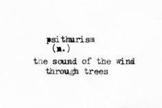 psithurism | the sound of the wind through trees