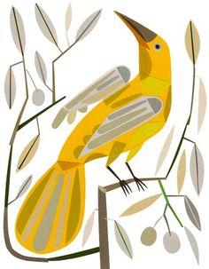 vector yellow bird on a branch