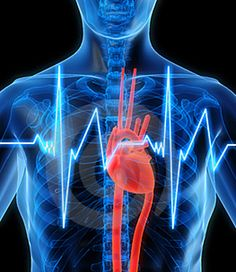 Cardiovascular Disease Risk Affected By Blood Pressure Changes