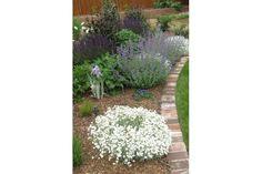 Brick for edging flower beds