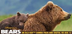 Introduce your family to this family and pre-order your copy of Disneynature's Bears today. di.sn/hhU