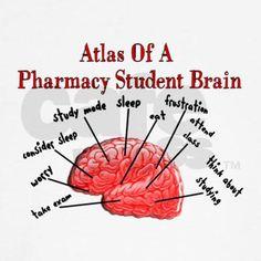 Atlas of a Pharmacy Student Brain!