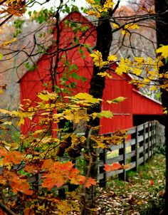 Fall - Barn at Rutledge Falls in Tullahoma, TN.