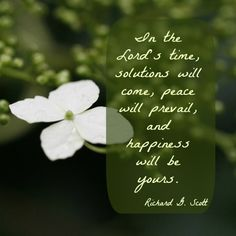 """""""In the Lord's time, solutions will come, peace will prevail, and happiness will be yours."""" -Richard G. Scott http://jesus.christ.org/4792/the-scriptures-can-be-applied-to-our-lives-and-bring-us-closer-to-jesus-christ Lord, Happiness, Peace"""
