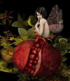 She is a flapper-I have never seen a pomegranate fairy!