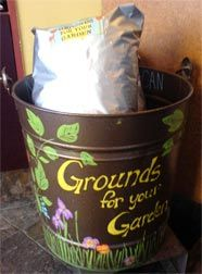 benefits of coffee grounds in the garden