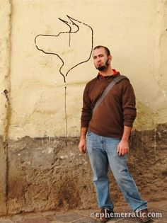 Bull street art and Todd, Cusco, Peru