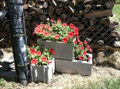 These cement blocks were 88 cents at Menards. I just set them up the way I needed, addied dirt and flowers. Make sure to pack the dirt in the holes well to prevent a lot of settleing.