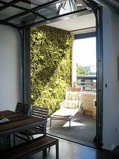 living wall, plants