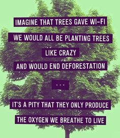 Imagine the trees gave wi-fi