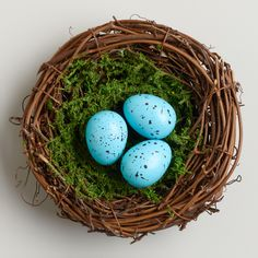 Mossy Robin's Eggs Nest at Cost Plus World Market