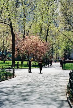 park in NYC