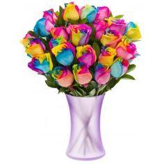Fiesta Rainbow Roses