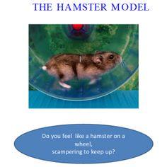 Hamster Coaching Model coach model, academi coach, coach academi, hamster coach, intern coach, coaches, stress management, ann voli, manag coach