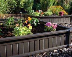 Charcoal painted raised garden beds