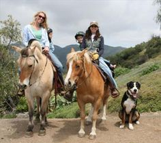 Park Place Stable in Malibu with trail rides and beach rides - great for families and groups!