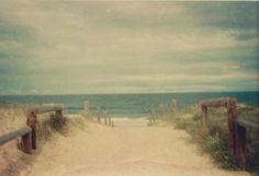 beach | Tumblr