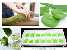 HOW to FREEZE Aloe Vera GEL!