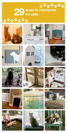 """29 adorable repurposed furniture ideas for pets!"" #upcycled Upcycled design inspirations"