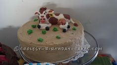 Coolest 40th Cow Birthday Cake... This website is the Pinterest of birthday cake ideas