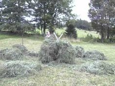 Hay in a Day - Part 2