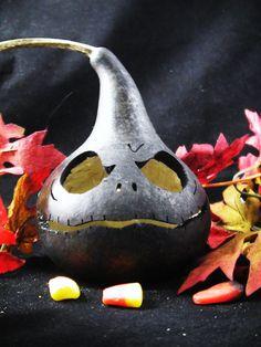black gourd.