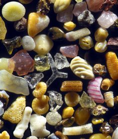 Tiny grains of sand magnified over 250 times.