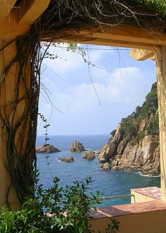 Catalonia, Spain. Wish I had gone there while I was studying abroad.