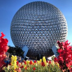 Beautiful photo of Walt Disney World shared via @Mary Powers Taylor Thomas Kissimmee, Florida. #Disney #Epcot