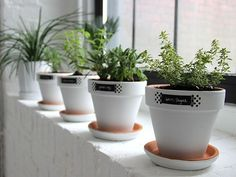 Modern + White + Minimalist: Easy Windowsill Herb Garden Planters windowsill herb garden, herb garden windowsill, garden planters, windowsil herb, herbs garden