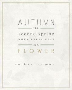 Autumn - Albert Camus ❥