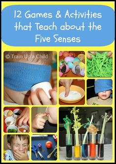 12 hands on activities to explore the five senses with children, isolating one sense at a time.