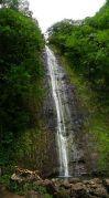 Manoa falls in Oahu, Hawaii
