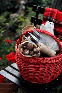 Fall bulb planting for Spring beauty!