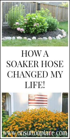Beat the summer heat by laying a soaker hose in your garden. All the details are in this post. Totally DIY too!