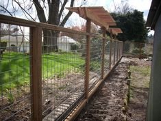 Dog Fence Design, Pictures, Remodel, Decor and Ideas - page 2