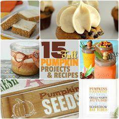 Great Ideas -- 15 Autumn Pumpkin Projects & Recipes!