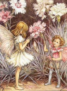 Cicely Mary Barker.  Pinks fairies.