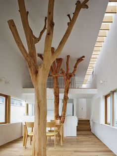 It would be so cool to have trees like this in a community cat room for the cats to climb, scratch and play on!