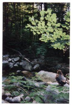 Atlas Cedarwood Essential Oil: Get grounded in the midst of change | Aromatherapy @Amy Lyons Galper Organic Spa Magazine Blog | #OrganicSpaMagazine