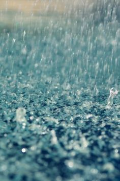 Rain. There are few words with such a calming and cleansing effect.