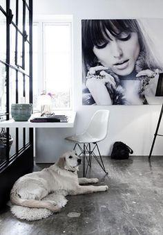 Wonderful Work Spaces