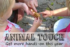 Hands on with animals