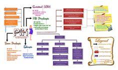 PIH concept map