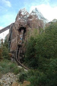 Expedition Everest - Animal Kingdom, Vincent's first roller coaster, nope not with me!!