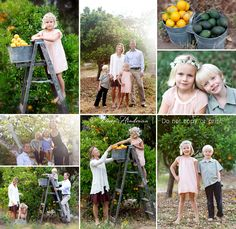 Family portraits, Child posing ideas, children's photography. I love shooting with fruit trees as backgrounds. More images from Encinitas family photographer Renee Hindman below. http://reneehindman.com/blog/catherine-blakespear-encinitas-family-photographer/